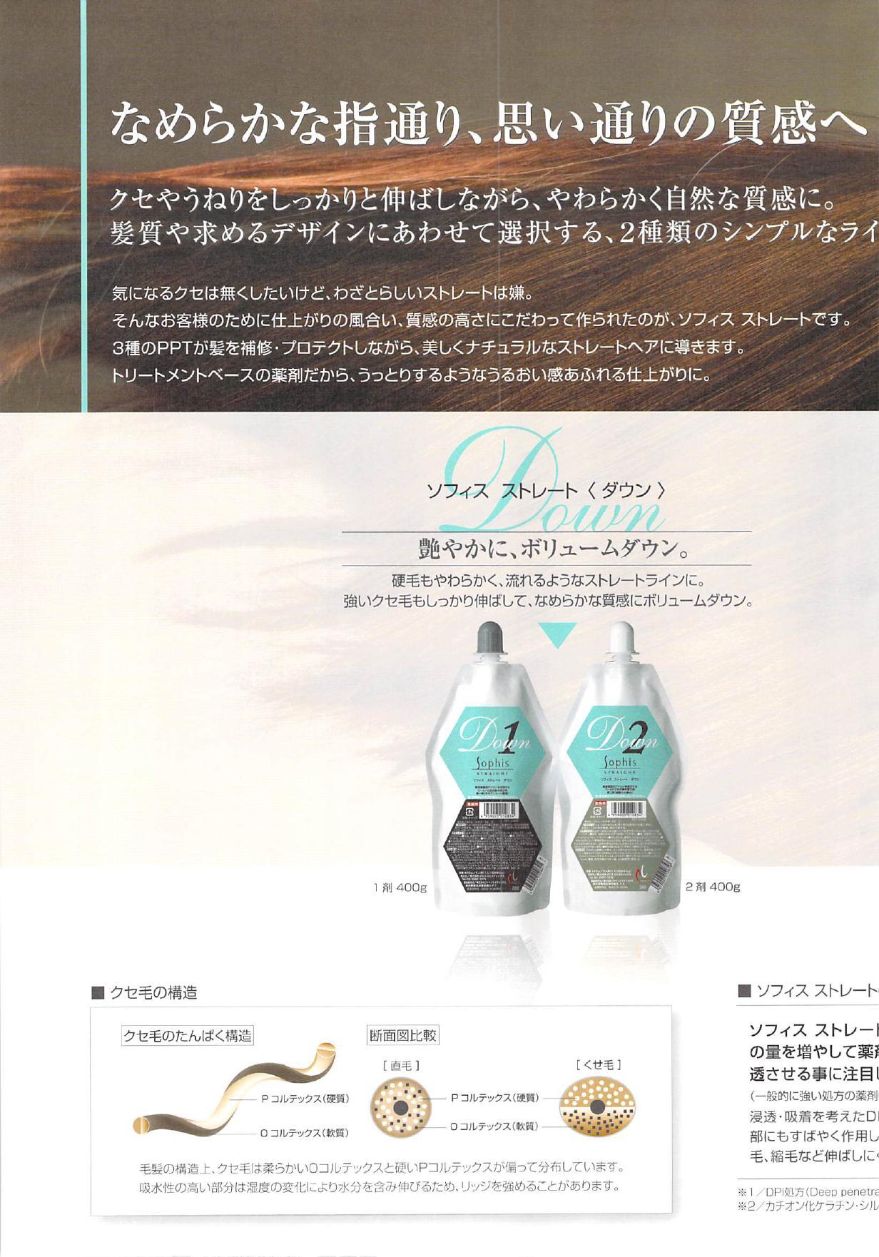 sofisu201211050002